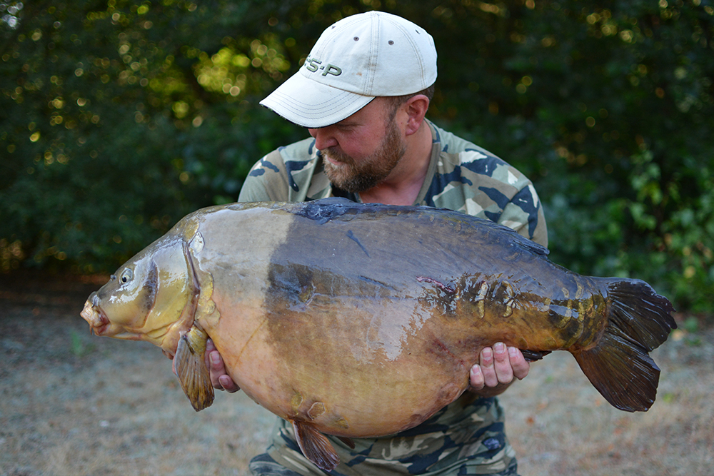 Not your average carp!