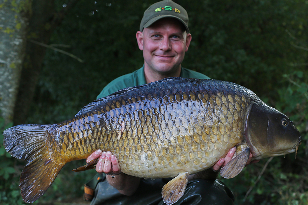 Another belting common...