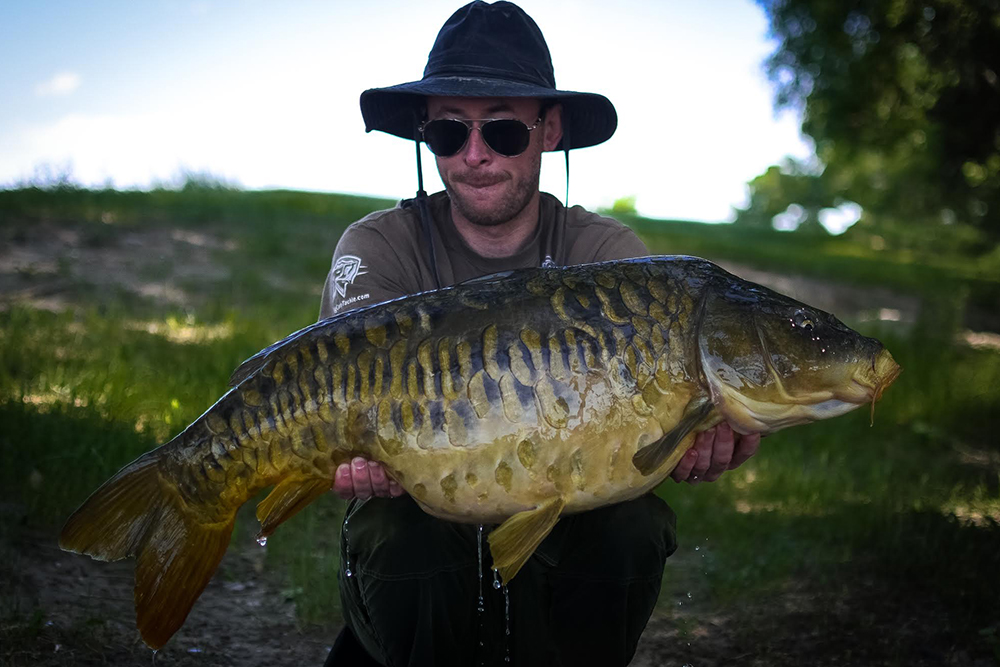 A carp that would not look out of place in Oxfordshire!